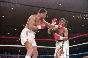 19 Apr 1986, Las Vegas, Nevada, USA --- 4/19/1986-Las Vegas, Nevada-: Larry Holmes punching Michael Spinks during their rematch fight for the heavyweight championship.  Spinks won the 15-round fight on a decision to retain his I.B.F. crown. --- Image by © Bettmann/CORBIS