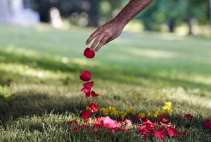 Arzam Farrokhi, an Iranian native now living in New York, drops rose petals on the grave of boxing great Muhammad Ali, Saturday, June 11, 2016, in Louisville, Ky. Cave Hill Cemetery opened to the public Saturday, the day after Ali's burial. (AP Photo/Mark Humphrey)